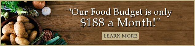 amodernhomestead food budget image