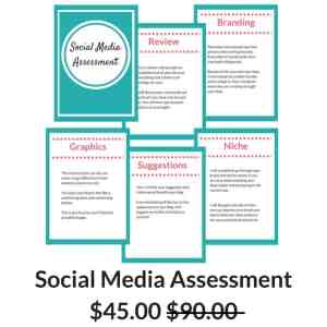 Social Media Assessment veryanxiousmommy.com