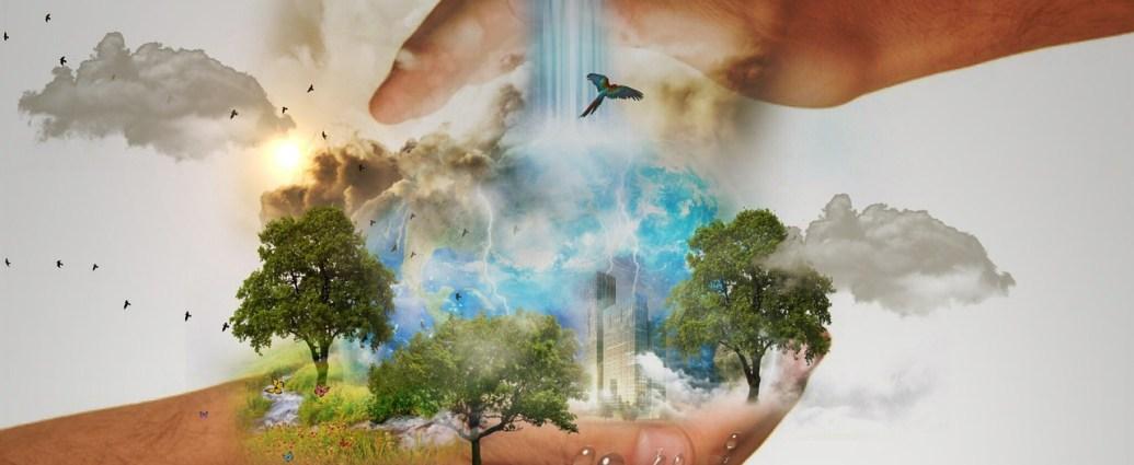 Tierra protección ambiental
