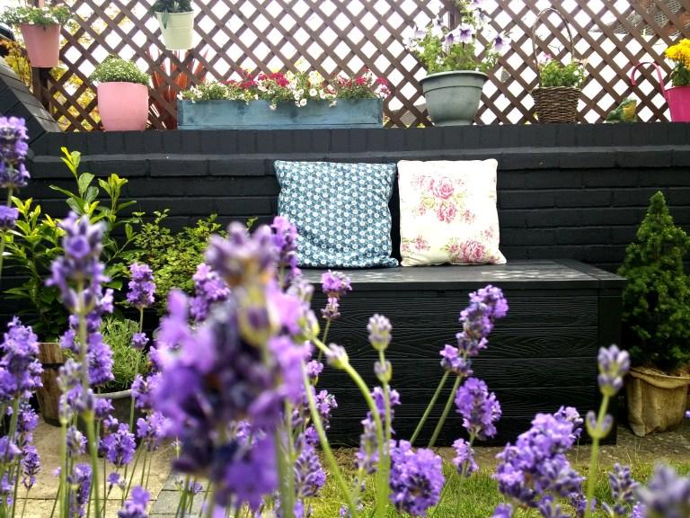 small garden makover