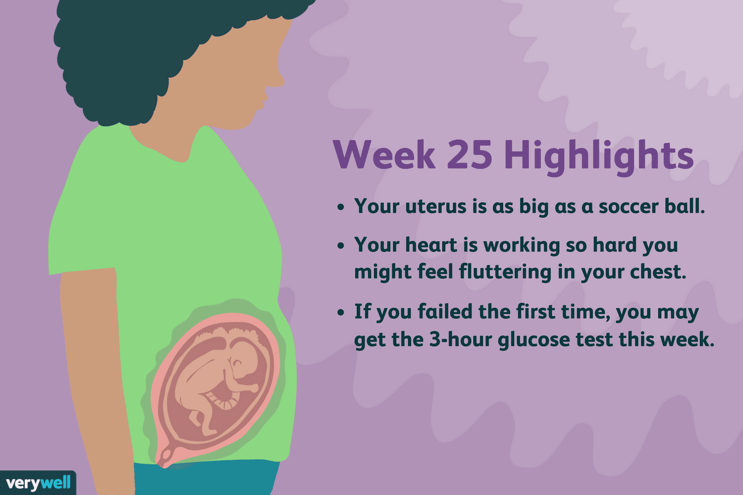 hight resolution of week 25 pregnancy highlights illustration by verywell