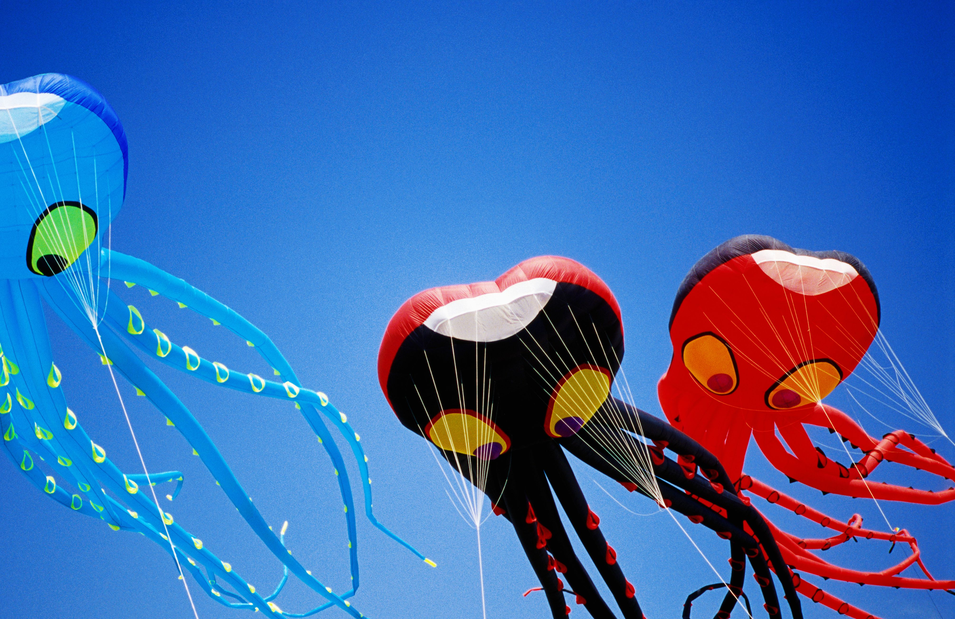 Fun Stories About Flying Kites