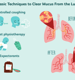 techniques to clear mucus from the lungs [ 6000 x 4000 Pixel ]