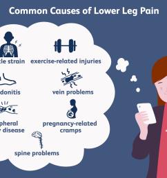 causes of lower leg pain [ 6250 x 4168 Pixel ]