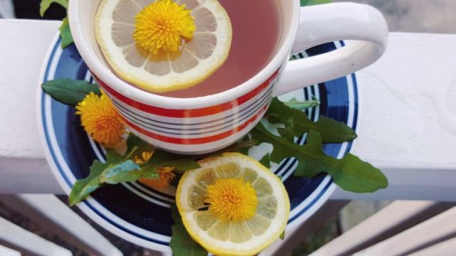 Image result wey dey for how to detox your kidney?