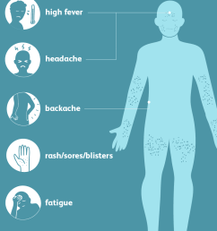 smallpox symptoms [ 1001 x 1001 Pixel ]