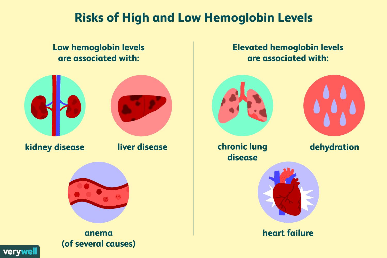 Hemoglobin Test: Uses Side Effects Procedure Results