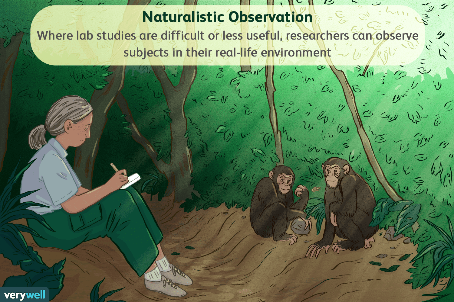 Naturalistic Observation In Psychology