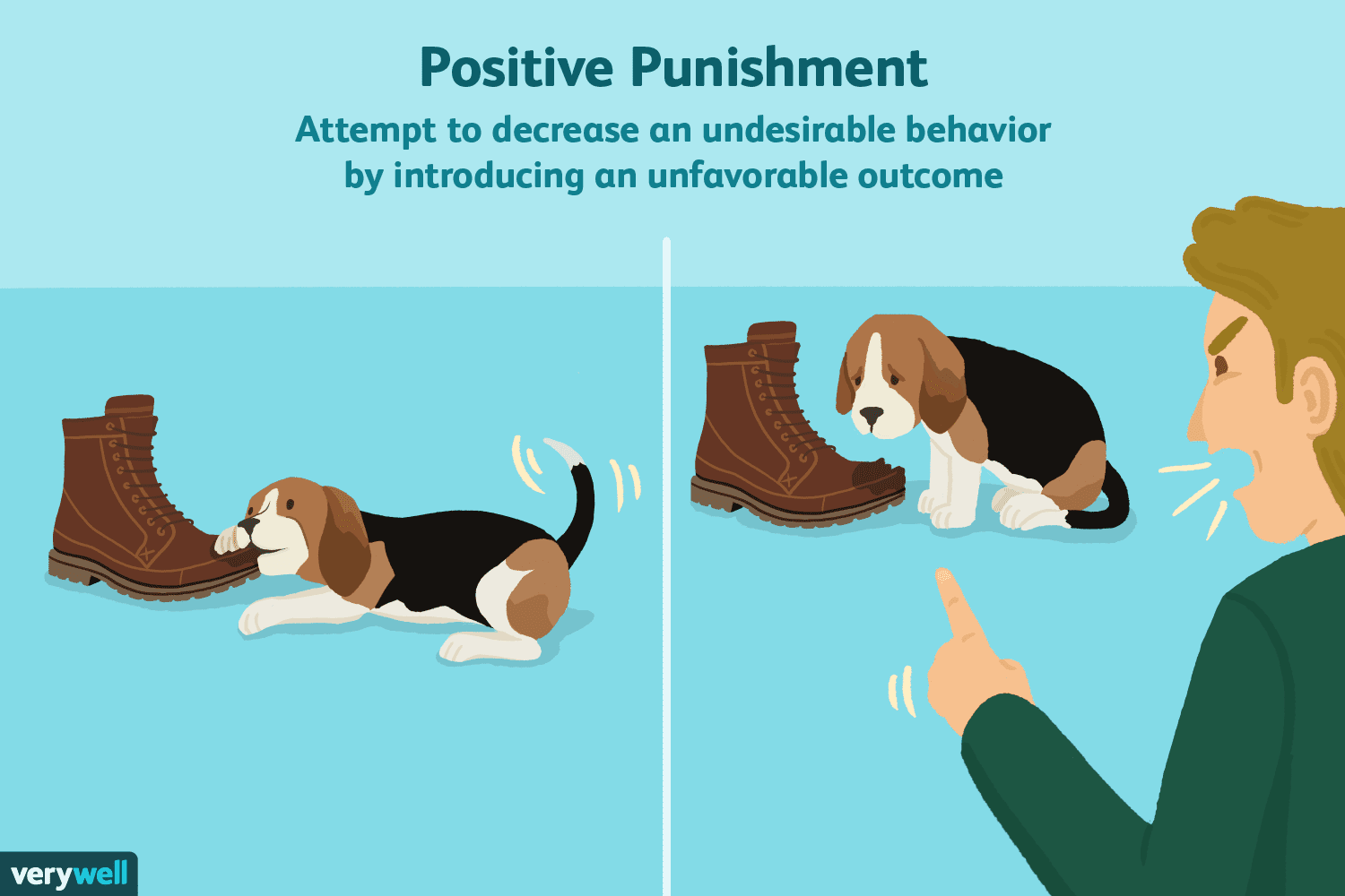Positive Punishment And Operant Conditioning
