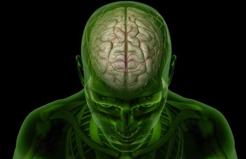 small resolution of brain arteries