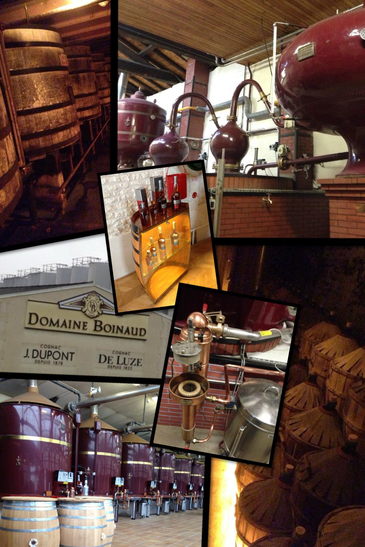 Visite domaine Boinaud - cognac De Luze - Vinocamp Cognac 2013