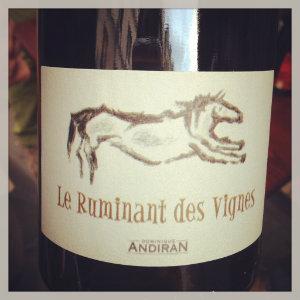 Ruminant des Vignes - Dominique Andiran