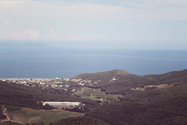 Vue-sur-Macinaggio-depuis-Rogliano