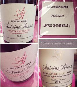 Vins-Antoine-Arena