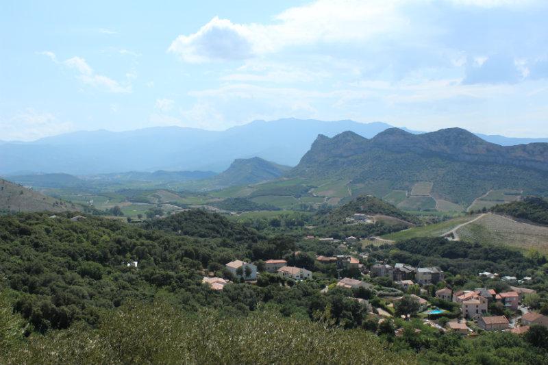 Vue côté terre sur la route de Barbaggio