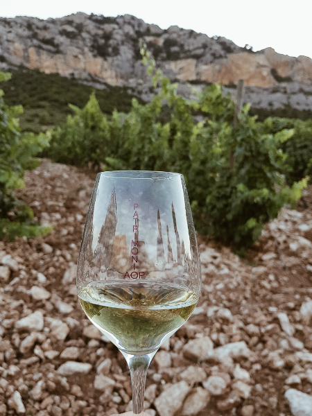 Verre vignes Patrimonio