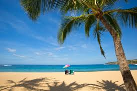 vakantie reisverzekering