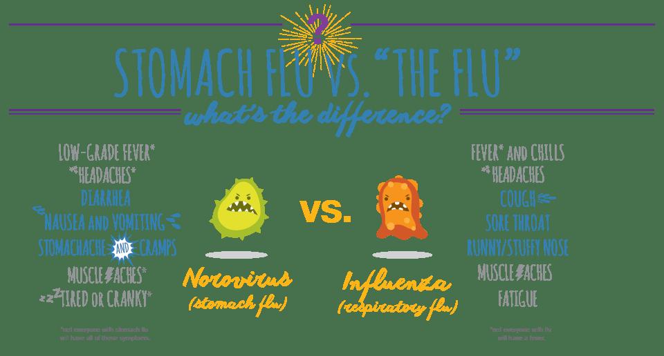 Difference Between Stomach Flu vs Flu | Vessel Medical