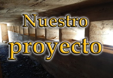 Nuestro proyecto