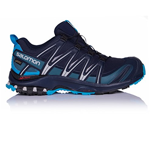 Recensioni Salomon Trail Running XA Pro 3D GTX scarpe maschili per la corsa