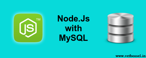 connect-mysql-database-using-node.js