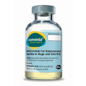 An Overview of Convenia for Dogs and Cats | VetDepot.com