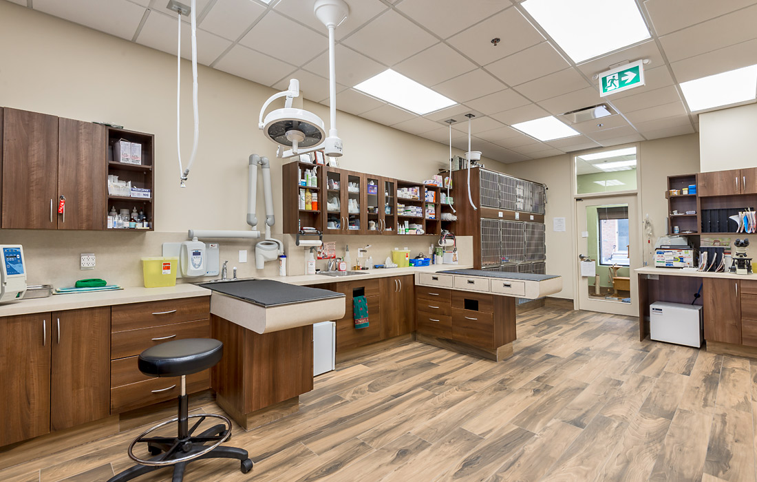 Legallais Veterinary Hospital Artistree Construction