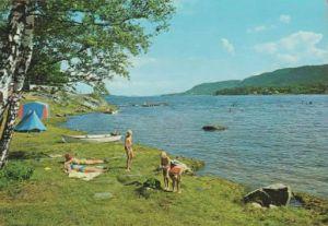 Holmåsen-camping
