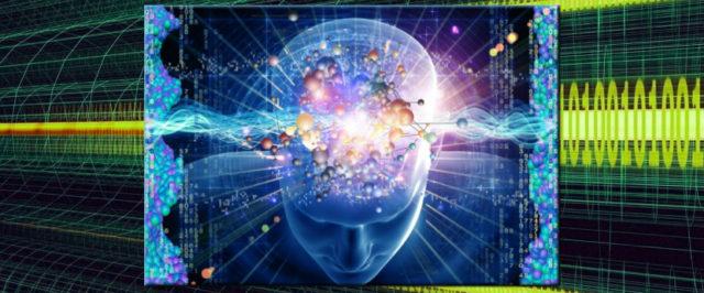 brain internet banner