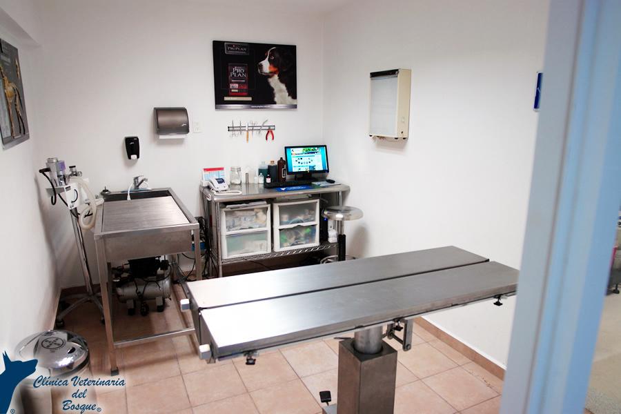 Instalaciones Clnica Veterinaria del Bosque