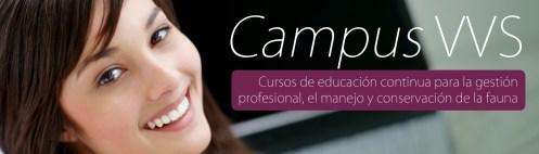 cenefa_campus_vvs