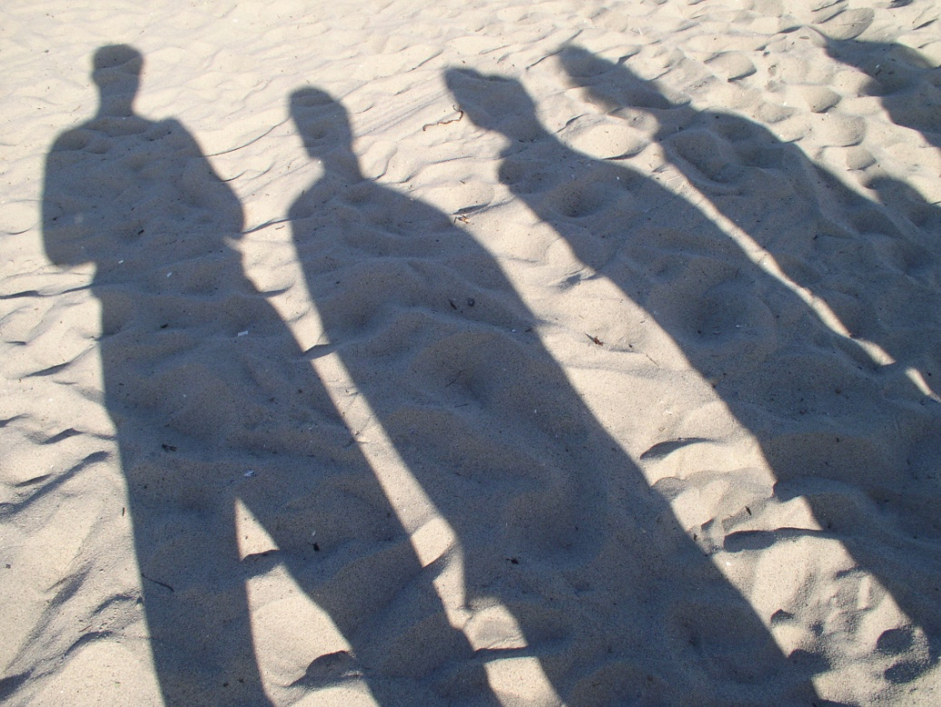 shadows-in-the-sand