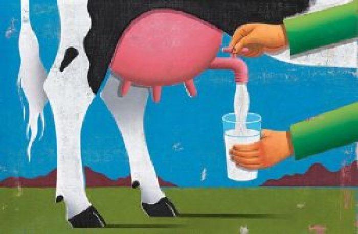 Milk Borne Diseases List