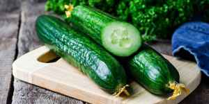 Cucumber Slices Perfect Fruits And Vegetables For Dogs