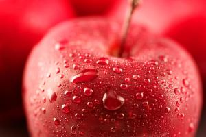 Juicy Apples Perfect Fruits And Vegetables For Dogs