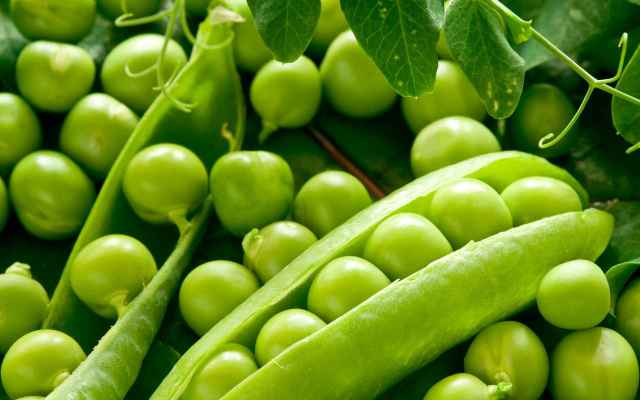 Pea Perfect Fruits And Vegetables For Dogs
