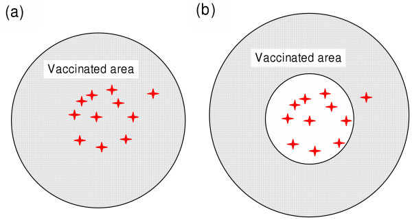 Ring Vaccination for Foot and Mouth Disease