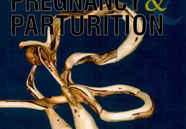 Pathways To Pregnancy And Parturition 3rd Edition PDF