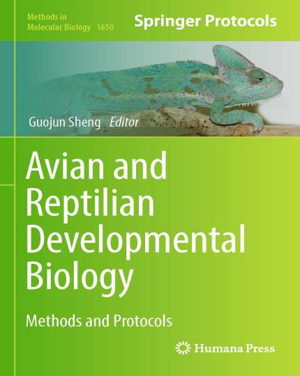 Avian And Reptilian Developmental Biology Methods And Protocols