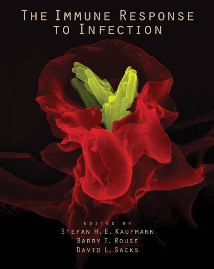 The Immune Response To Infection