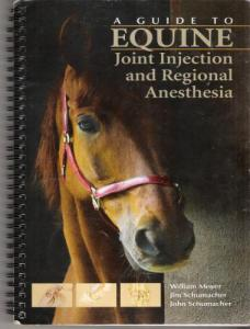 A Guide To Equine Joint Injection And Regional Anesthesia