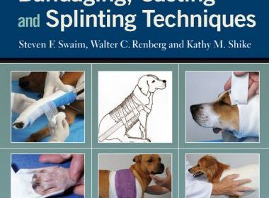 Small Animal Bandaging, Casting And Splinting Techniques