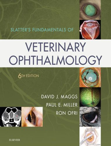 Slatters Fundamentals Of Veterinary Ophthalmology 6th Edition