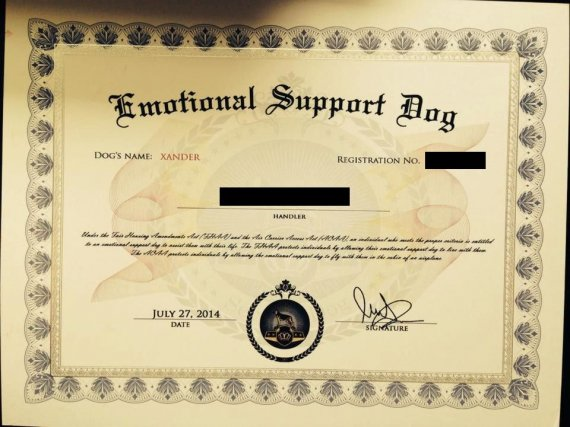 Register your Dog for Emotional Support Animal Certificate