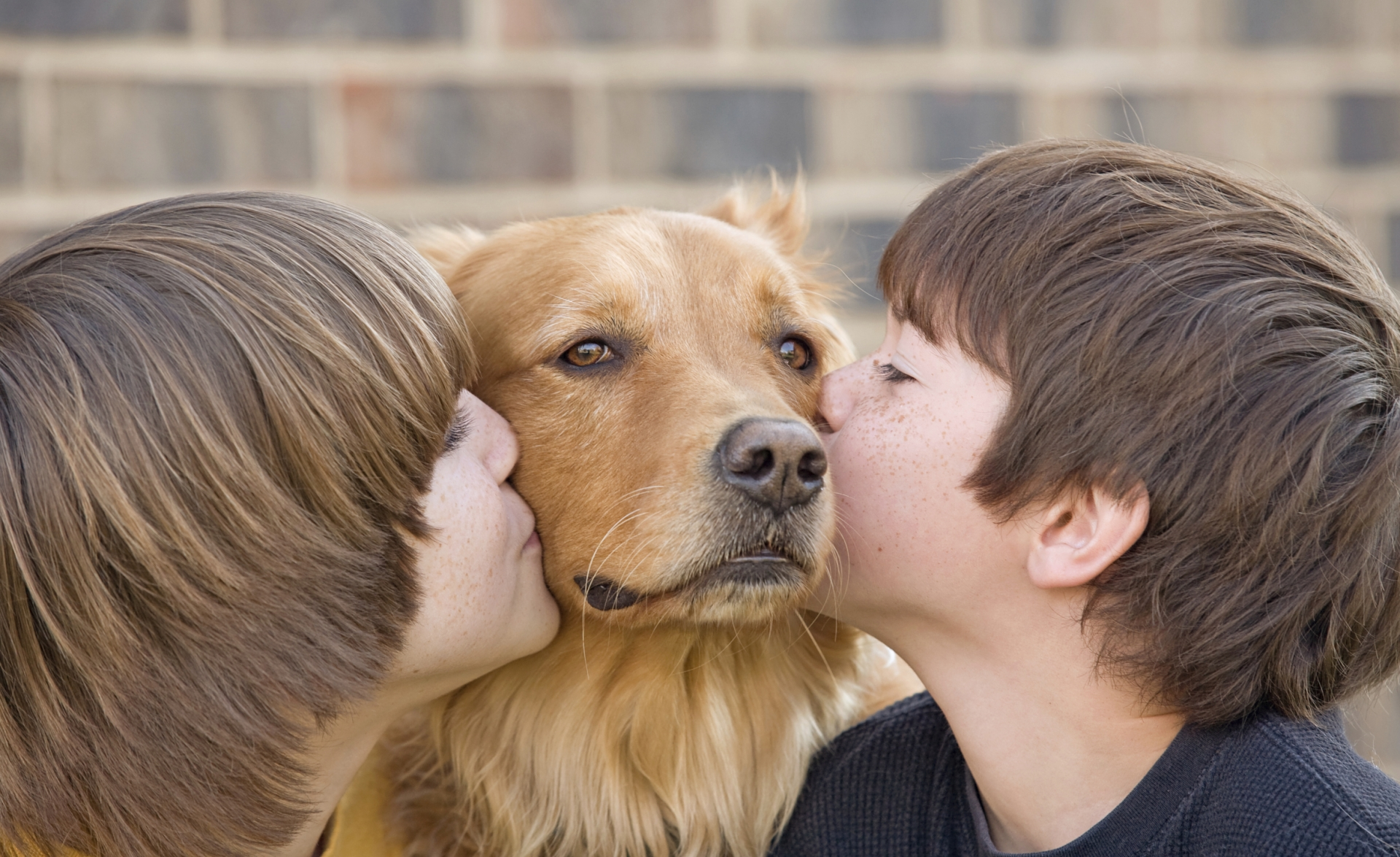 Tener Mascota Ayuda A La Salud