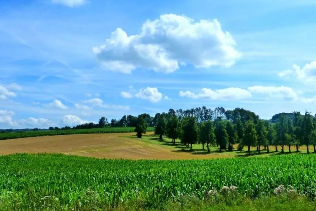 Onvergetelijke panorama's langs mooiste wandelroute van Vlaanderen
