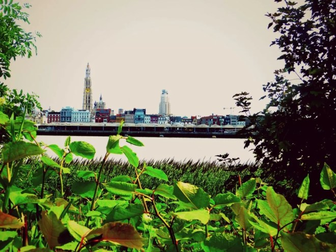 Antwerpen21