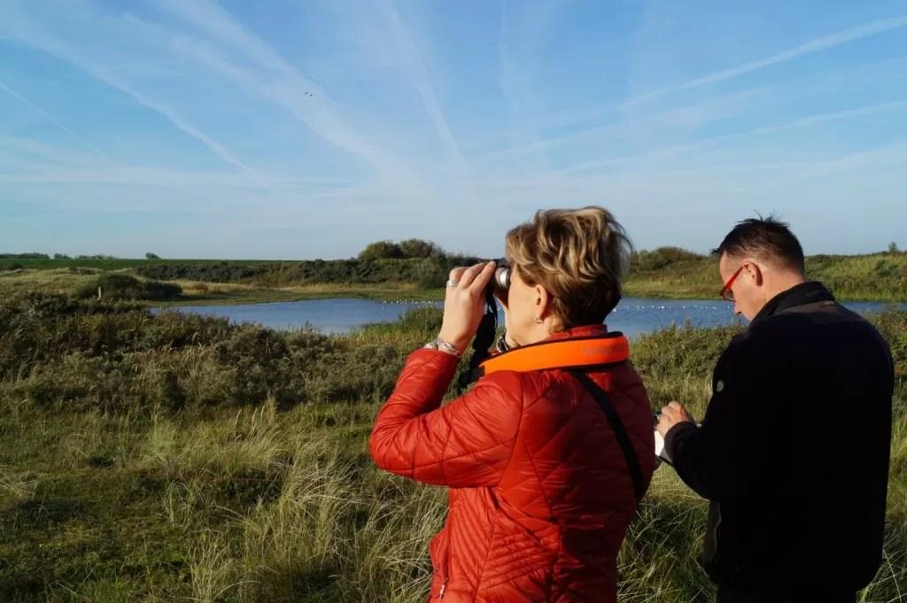 Vogels spotten op Texel landschap