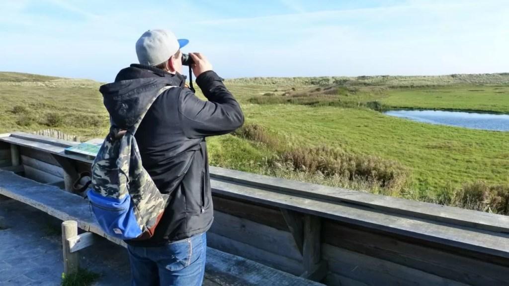 Vogels spotten op Texel
