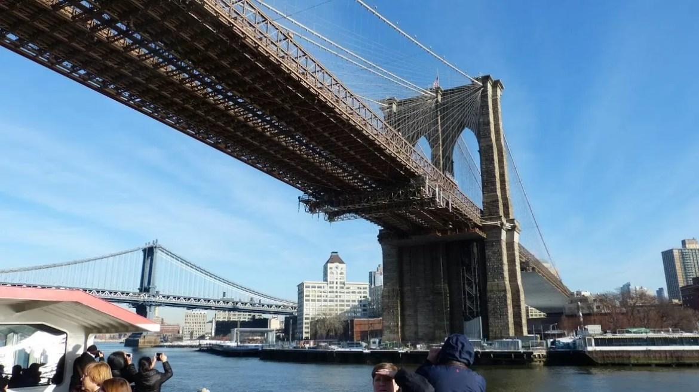 new york 23